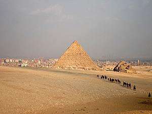 A group of tourist on a camel ride in Giza