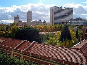 Our apartment view - capturing the leaves changing to yellow in November, outside our apartment.