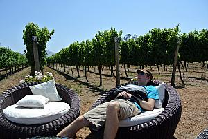 Vina del Mar, Chile - Jay resting at a winery. (No wine consumed yet...just was up at 5am to get off the ship!)