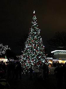 Cincinnati Zoo Festival of Lights