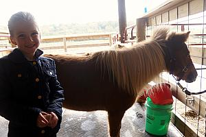Cardin and a miniature horse