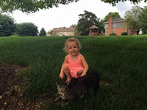 Capri playing with a neighbor's cat.