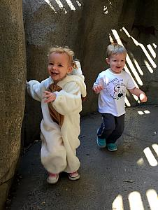Capri and Benny running through the cave by the lion's den.
