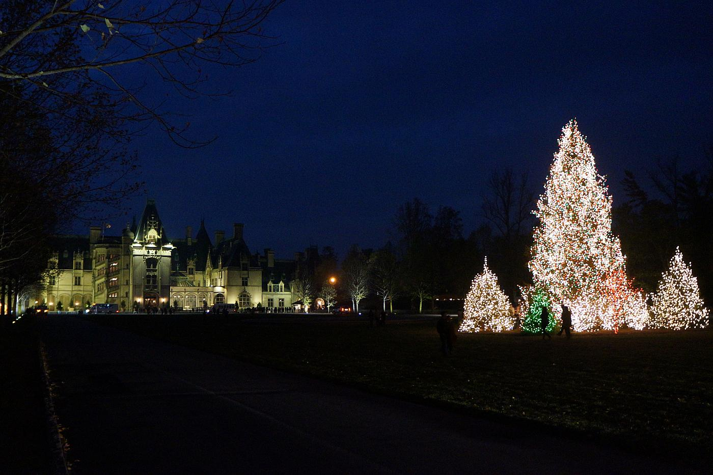 Biltmore House With Christmas Trees [view] [download]