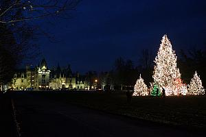 Biltmore House with Christmas Trees