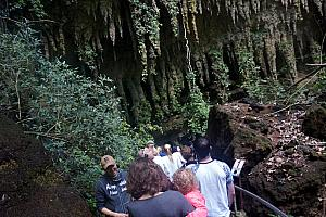 Wednesday, March 8: entering Camuy Cave
