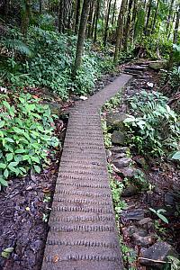 Example of the hiking trail - it was concrete or rocks the whole way. They did a good job of having the trail blend in with the nature.